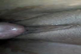 Www.sace.lakel,xxx,videoso,a to z,com