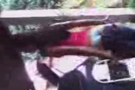 Xxx video seal pack hd.com bhai bahan