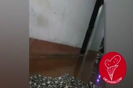 Bhaji xxxii video