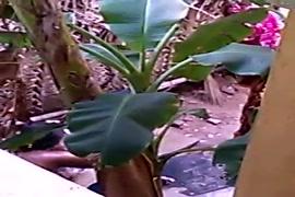 Www. सेक्सी वीडियो डॉग पिक्चर hd mp4